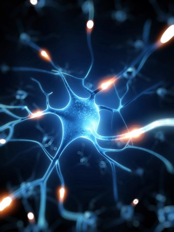 Mapping the Circuitry Responsible for Chronic Pain