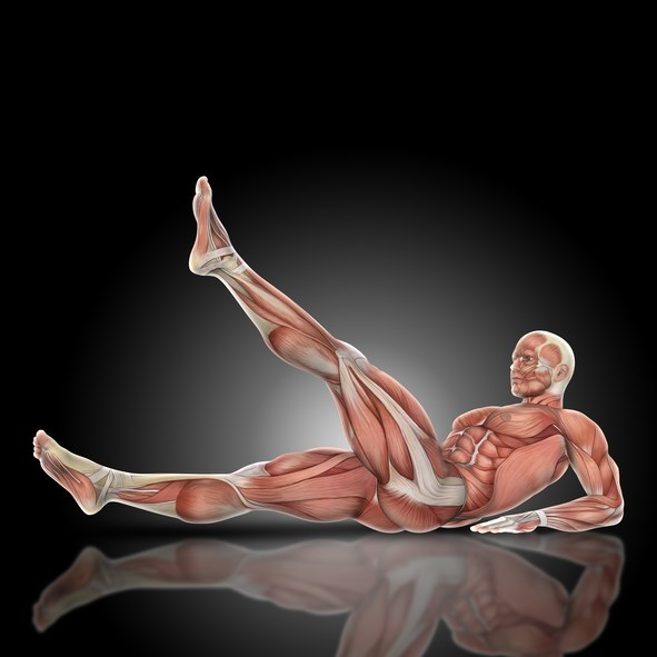 CFS symptoms are exacerbated by neuromuscular strain obtained with a passive supine straight leg raise.