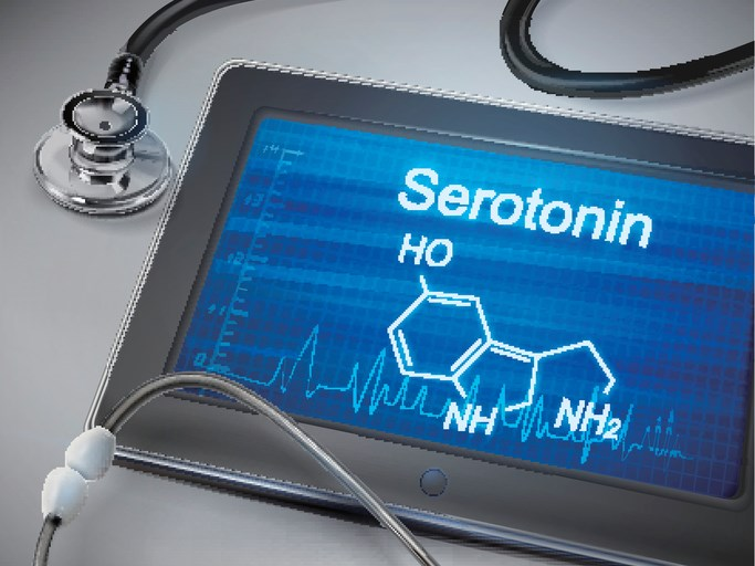 Risk of Serotonin Toxicity due to Drug-Drug Interactions for the Treatment of Migraines