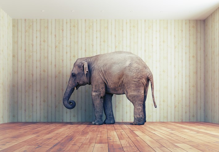 Chronic pain: the elephant in the room.