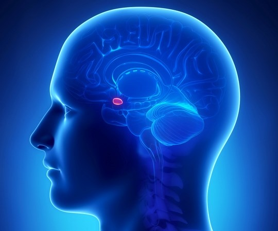 Amygdala activity and body responses can be elicited in healthy people, without any awareness of the stimulus and without any feeling of fear.