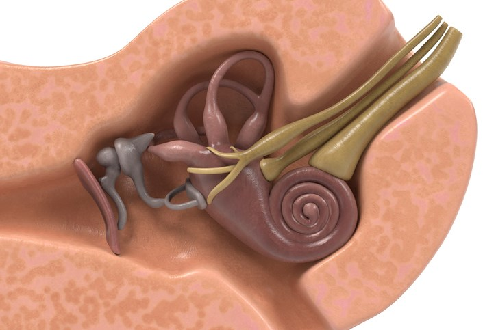 "Vestibular migraine refers to ""vestibular symptoms that are causally related to migraine."""