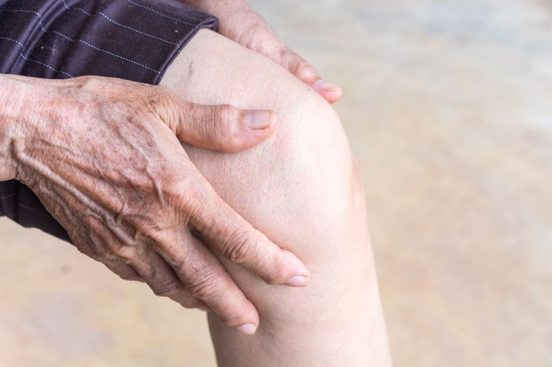Systematic Review Does Not Identify Patient-Related Risk Factors for Chronic Pain After Total Knee Replacement Surgery