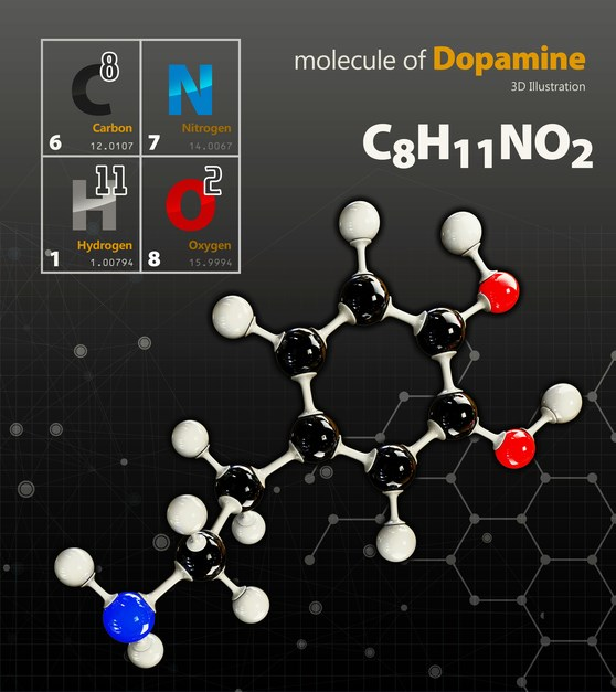 Ziprasidone is known to modulate the dopaminergic system in a similar manner as droperidol and haloperidol.