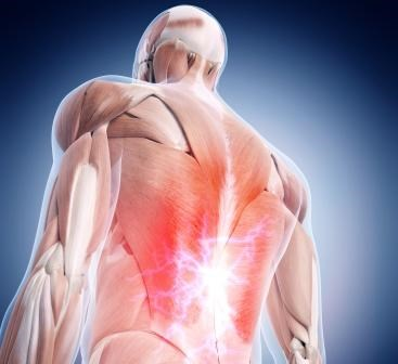 Efficacy of Lumbopelvic Stabilization Training for Low Back Pain