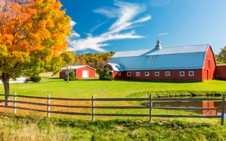 Americans who live in rural areas have a higher risk of death from 5 leading causes than people who live in urban locations