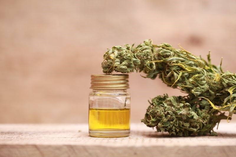 Cannabinoids May Be Effective on Experimental Pain Threshold and Tolerance, Not Intensity
