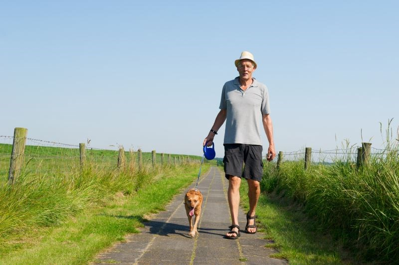Walking Ability in Older Adults With Lumbopelvic Pain