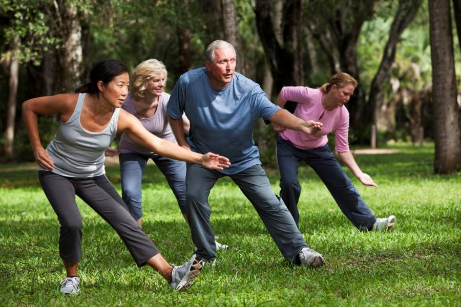 Physical Therapy vs Tai Chi for Knee Osteoarthritis: Dose-Response Effects of Interventions
