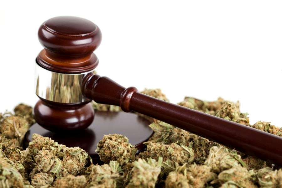 Medical Marijuana Laws, Dispensaries May Reduce Deaths From Opioid Overdose