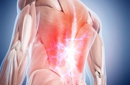 The worldwide prevalence of low back pain was estimated at 7.3% in 2015.