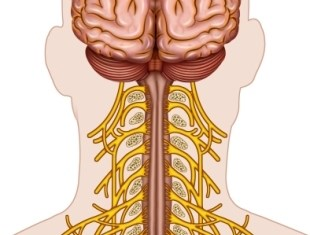 Superficial Cervical Plexus Block May Be Safe, Effective for Emergency Medicine Use