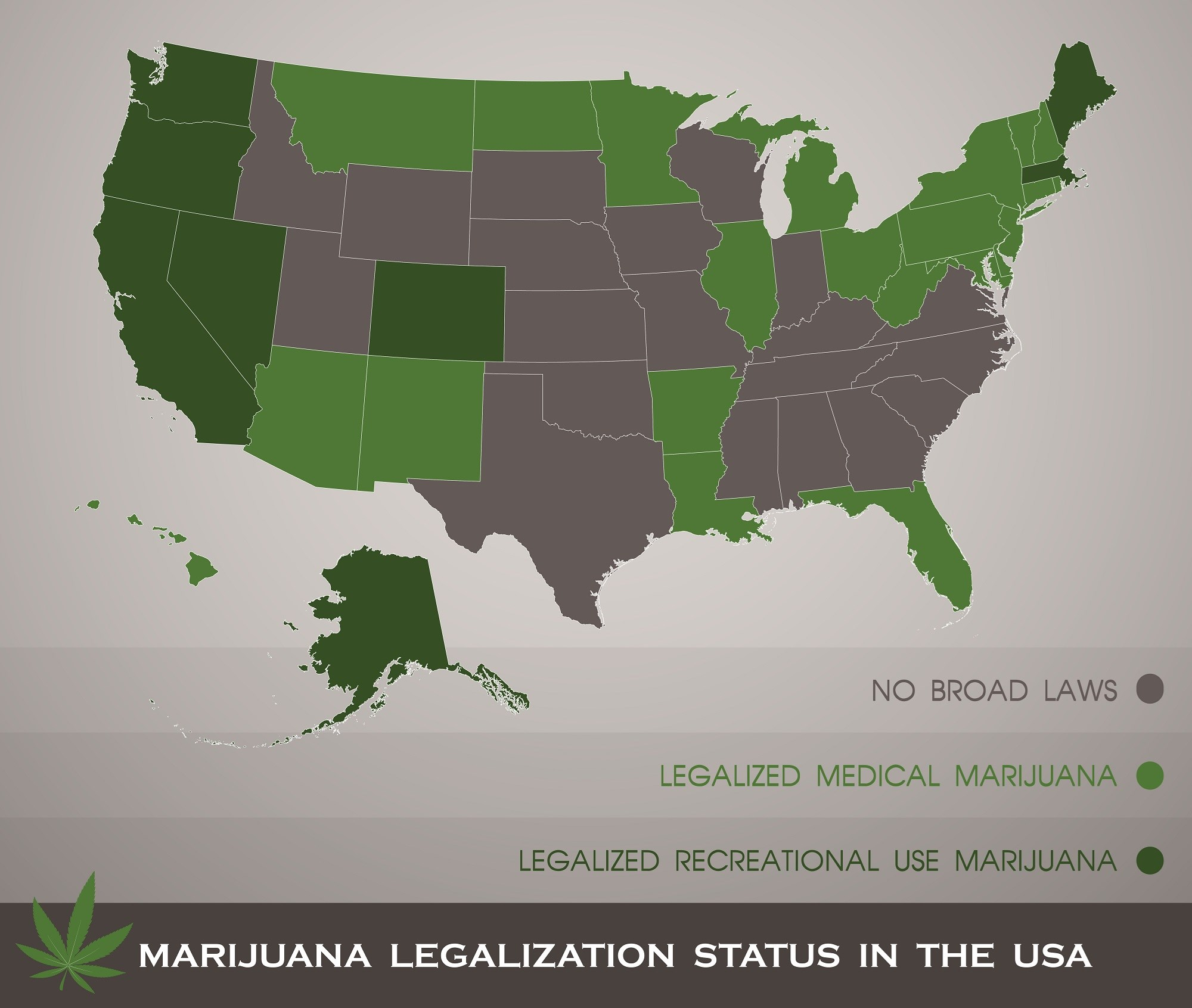 Medical Cannabis Legalization Associated With Reduced Schedule III Opioid Prescriptions