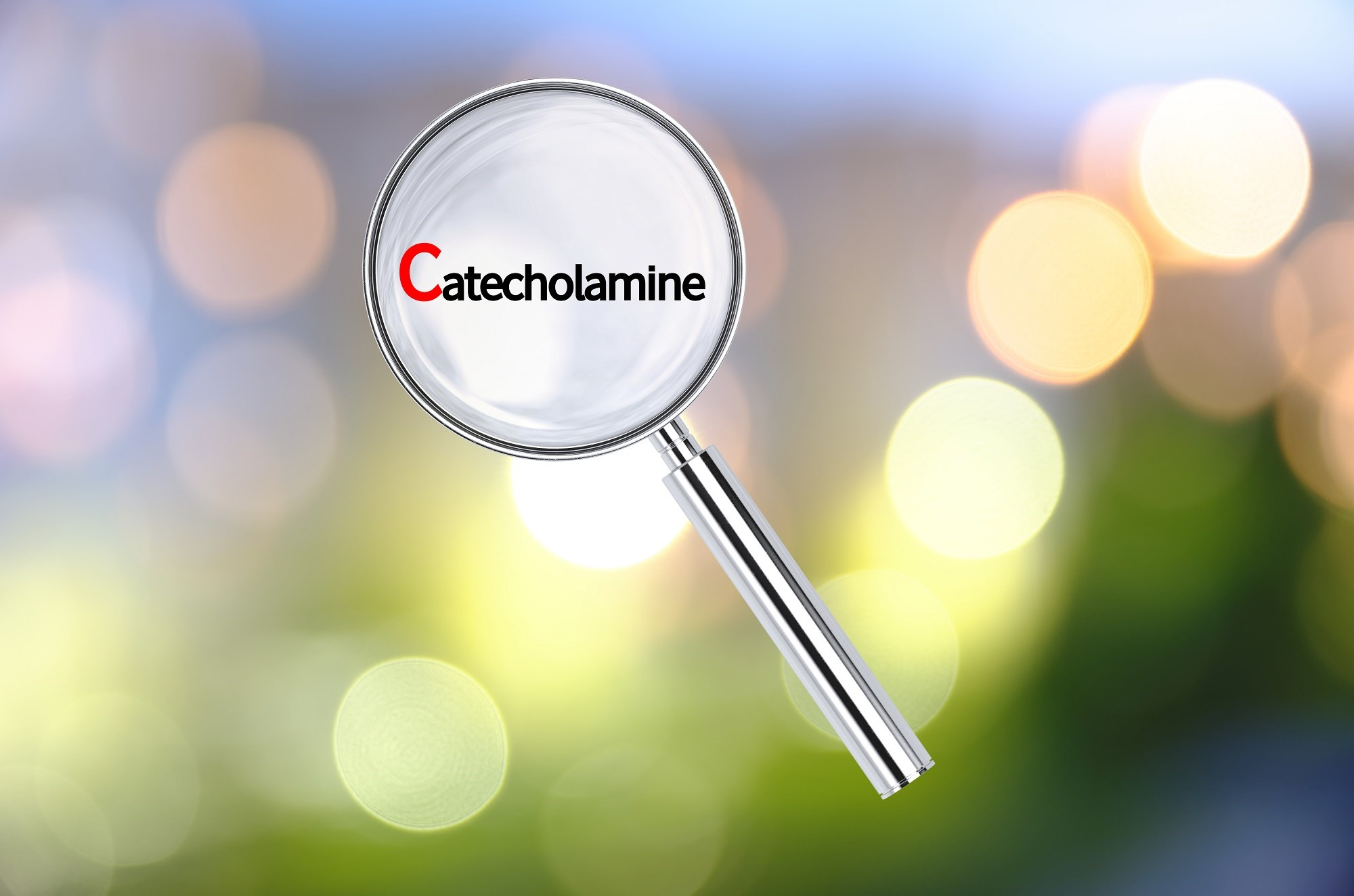Effects of Mindfulness Therapy, Pharmacologic Prophylaxis on Catecholamine Levels in Migraine